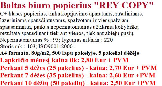 rey copy